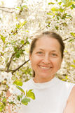 Woman aged in lush garden. Beautiful mature woman on background of the cherry blossoms royalty free stock photos