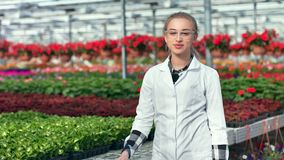 Woman agricultural engineer posing in greenhouse enjoying break having positive emotion. Medium shot. Happy female scientist wearing sterile white uniform stock footage