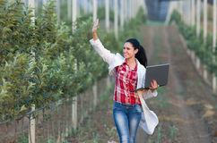 Woman agronomist in orchard Stock Photo