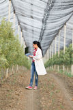 Woman agronomist in the orchard Royalty Free Stock Photo