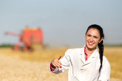Woman agronomist in wheat field Royalty Free Stock Photos