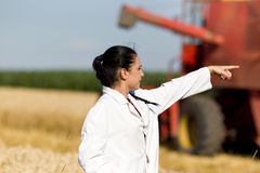 Woman agronomist in wheat field Stock Photography