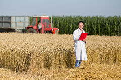 Woman agronomist in wheat field Stock Image