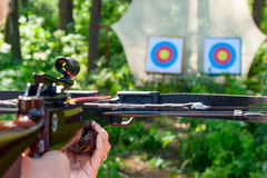 Woman aiming crossbow at target Royalty Free Stock Image