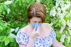 Woman with allergic rhinitis about bird cherry blossoms Royalty Free Stock Images