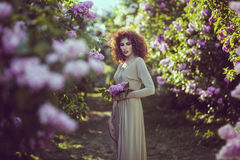 Woman in the alley of lilac bushes in the garden. Stock Image