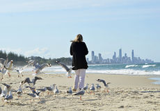 Woman alone walking on beach surrounded by flock sea birds & distant city life Royalty Free Stock Photo
