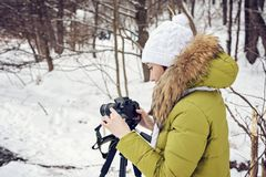 Woman Amateur photographer takes a winter landscape on the lake in the forest. copy space.  royalty free stock photography