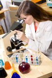 Woman analyzing samples in a lab Royalty Free Stock Photos