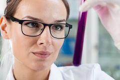 Woman analyzing test tube Stock Image