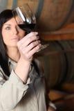 Woman analyzing wine Royalty Free Stock Image