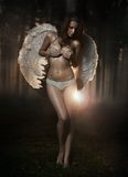 Woman-angel Royalty Free Stock Photo