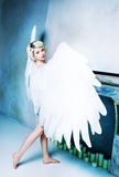 Woman angel Royalty Free Stock Images