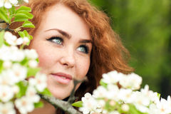 Woman and apple blossoms Royalty Free Stock Photography