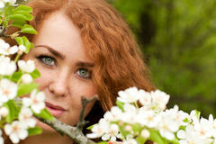 Woman and apple blossoms Stock Image