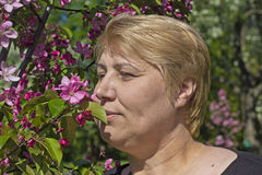 Woman and apple flower Stock Photography