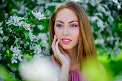 Woman with apple tree Stock Image