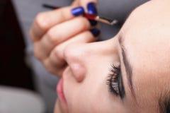 Woman applying eyeshadow makeup brush Royalty Free Stock Images