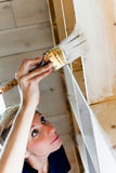 Woman Applying the First layer of Paint on a Wooden Library Royalty Free Stock Photo