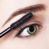 Woman applying mascara on eyelashes with brush. Young woman applying mascara on eyelashes with brush. Close-up Royalty Free Stock Photo