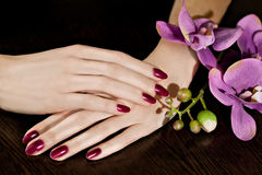 Woman applying nail varnish to finger nails Royalty Free Stock Image