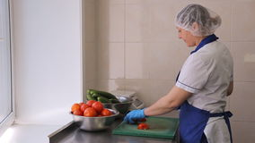 Woman in apron and gloves cut tomatoes and cucumbers. This employee works on production of food. She's not a chef, rather a handyman who cut vegetables, wash stock video
