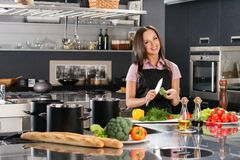 Woman in apron on modern kitchen Stock Image