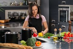 Woman in apron on modern kitchen Stock Photos
