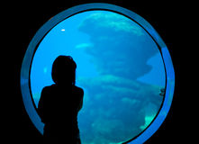 Woman in the aquarium. Royalty Free Stock Photography