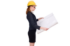 Woman architect with blueprints on white Stock Image