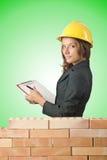 Woman architect near brick wall Stock Image