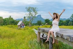 Woman with arm raised on wooden bridge with yellow cosmos flower field stock photo
