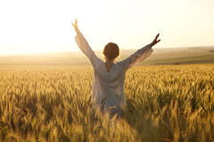 Woman with arms outstretched. In a wheat field royalty free stock images