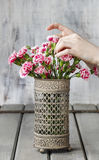 Woman arranging bouquet of carnation flowers. Royalty Free Stock Photo