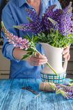 Woman arranging a bunch of flowers in a vase Royalty Free Stock Photos