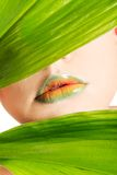 Woman with an artistic makeup behind a leaf Royalty Free Stock Photo