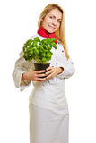 Woman as chef cook holding basil. Happy woman as chef cook holding a pot of fresh basil herbs Royalty Free Stock Photos