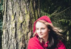 Woman as Little Red Riding Hood II Stock Image