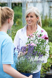 Woman Asking Staff For Plant Advice At Garden Center Stock Photo