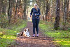 Free Woman At Park And Training Her Dog To Lay Down Stock Images - 168860954