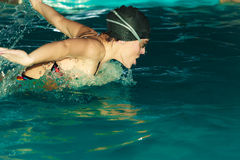 Woman athlete swimming butterfly stroke in pool. Stock Photos