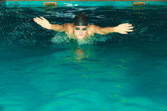Woman athlete swimming butterfly stroke in pool. Stock Photo