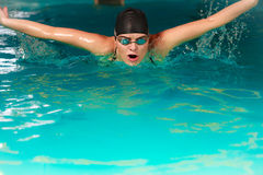 Woman athlete swimming butterfly stroke in pool. Royalty Free Stock Image
