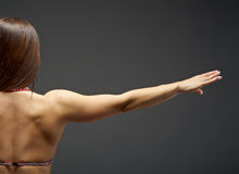 Woman  athletic body . Stock Image