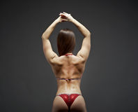 Woman  athletic body . Royalty Free Stock Photography