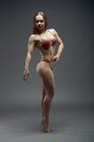 Woman  athletic body . Stock Photos