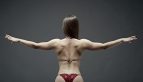 Woman  athletic body . Stock Images