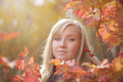 Woman in the autumn Royalty Free Stock Photo