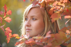 Woman in the autumn Stock Photo