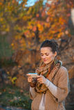 Woman in autumn evening outdoors writing sms Royalty Free Stock Photos